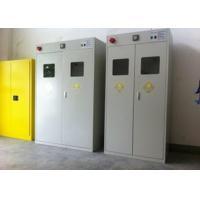 Auto Alarm Compressed Gas Cylinder Storage Cabinets Epoxy Coating Safety Furniture