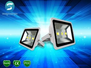 China High Lumens 50W Outdoor LED Flood Lights COB Waterproof IP65 For Square Park on sale