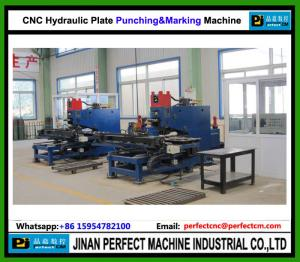 China China TOP Supplier CNC Hydraulic Plate Punching Machine CNC Tower Manufacturing Machine (PP103) on sale