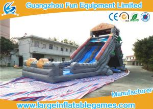 China Animal Theme Large Inflatable Water Slides For Outdoor Rental Business on sale