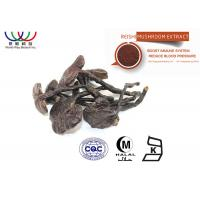 China Water Soluble Reishi Mushroom Extract Brown Fine Powder Support Circulatory System on sale
