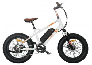 China Kids Full Suspension Fat Tire Electric Bike Lithium Battery 7 Speed Gear on sale