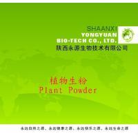 Shaanxi Yongyuan Bio-Tech supply Herbal Powder,Achyranthes aspera Powder