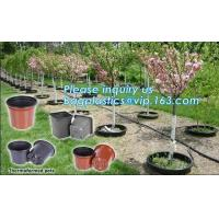 plastic pots for nursery plants clear orchid pots photo,1, 2, 2.5, 3, 5, 7, 10 gallon nursery plastic flower pot,plantin