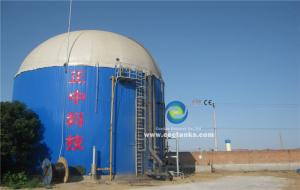 China 1 MW Biomass Gasification Power Plant Glass Fused to Steel Tank for Convert Waste to Energy on sale