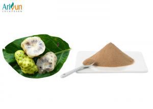 China No Added Sugar Fruit And Vegetable Powder Dried Noni Powder 8 - 10% Maltodextrin on sale