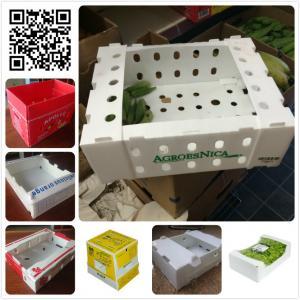 China Fresh plastic 5kg 10 lbs okra asparagus green bean packaging box on sale