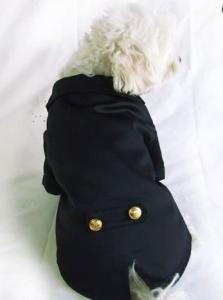 China Black Little Dog Boy Pet Tuxedo Bow Tie Costume For Weddings / Puppy Tuxedos on sale