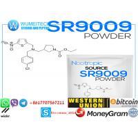 Powerful white raw powderSERMs Steroids Sarm Series Sr 9009 Raw Pure Powder with fast delievery