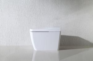 China Bathroom Auto Wash Toilet Wind Temperature Adjusting With Body Sensor on sale