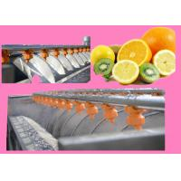 Fruit And Vegetable Processing Machinery , Vegetable Processing Equipment HR-2000