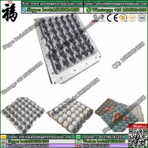 China plastic egg crate mould/ egg rack mold / die on sale