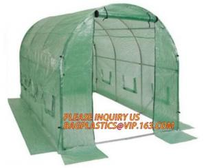 China Economic Small Windscreen Green Garden House,vegetable greenhouse hoop green house,small Garden Greenhouse for Indoor pl on sale