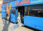 Manual Bus Lightweight Wheelchair Ramp , Removable Wheelchair Ramp TS16949 Certificate