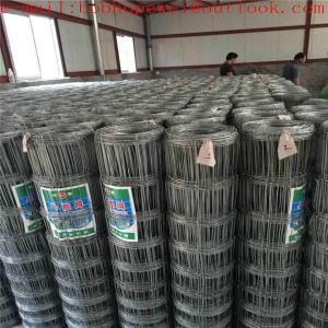 China farm fence panels/cattle wire/ net wire fence/field fencing for sale/ animal fencing/farm fencing prices/mesh fencing on sale