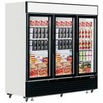 Upright Commercial Display Freezer Beverage Cooler