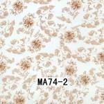 MA74-2