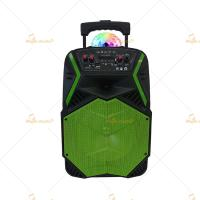 China High Powered 15 Inch Bluetooth Trolley Speaker with Bass / Remote Control on sale