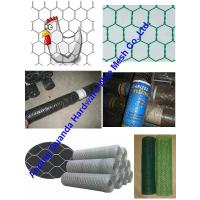 China hexagonal wire mesh supplier (electro galvanized/ hot dipped galvanized/  galvanized)  on sale