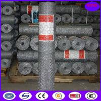China American Stucco Wire Netting (High Quality&Competitive Price) on sale