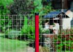 Age Resistance Garden Wire Mesh , Rot - Proof PVC Welded Wire Mesh