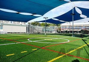 China Durable Surface Outdoor Artificial Grass , Low Friction Indoor Soccer Artificial Turf on sale