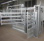 Squeeze Crush Cattle Handling Equipment