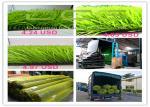 Football Field Artificial Carpet Grass Soccer Field Artificial Grass