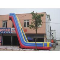 China Vivid Printing Big Blow Up Water Slides , Inflatable Bouncy Slide UV Protective on sale