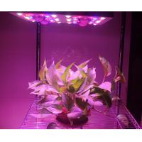 620 Watt(UV/IR) LED Grow Lamp Lights 3000k Blue And Red 5W Diode , 120V Power Cord