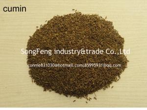 China cumin seeds on sale