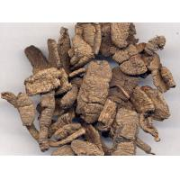 China Morinda Root Extract,Bacopin Extract,Medicinal Indianmulberry Extract 10:1 on sale