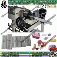 Free design hot sale apples packaging foam net making machinery