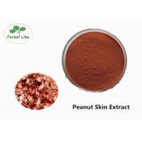 China Natural Anthocyanin Peanut Skin Extract 95% Proanthocyanidins Powder on sale