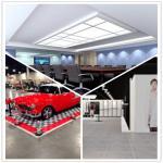 Meeting Room/Show Room/Garage/Warehouse/Bathroom/Home PVC Interlocking Decking Flooring