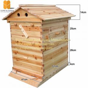 China colmeia de madeira de fluxo da abelha do auto do mel dos quadros dos PCes da ferramenta 7 da apicultura com quadros on sale