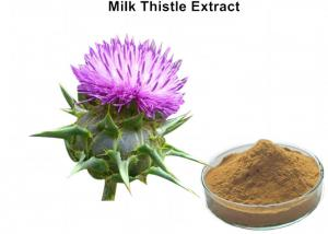 China Milk Thistle Natural Plant Extracts Silymarin Scavenging Active Oxygen For Liver Protecting on sale
