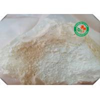 Health Muscle Buidling Steroids Hot Sale Legit Gear Female Hormone Powder E1 Estrone CAS: 53-16-7  for Muscle Bodybuildi