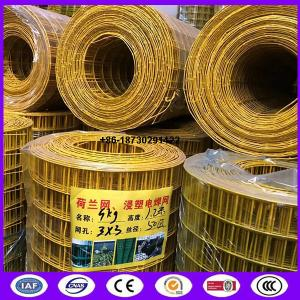 China Yellow color PVC coating Holland wire mesh fence 30mmx30 mm Hole opening ​ in 1.2 meter height on sale