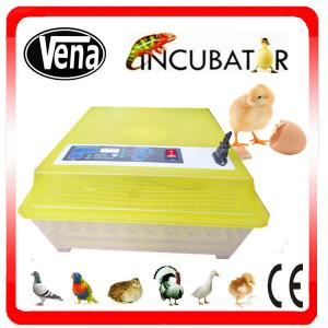 China Full automatic digital small incubator for parrot egg hatching VA-48 on sale
