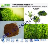 manufacture Seaweed extract fertilizer powder and flake liquid --Kelp extract