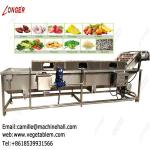 Commercial Dates Processing Machine Manufacturers|Dates Cleaning Machine on Sale