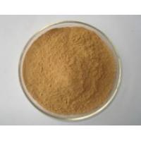 Lose Weight Medicine Cassia Nomame P.E/Cassia Nomame Extract,Cassia Nomame Extract Powder