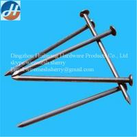 best quality common nails from Professional China factory
