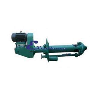 China Vertical slurry pump EVM-150S on sale