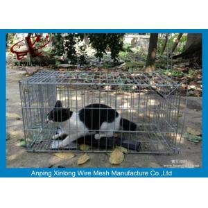 China Гальванизированный/покрытый ПВК сварил загородку ячеистой сети для длины клеток животного различной on sale
