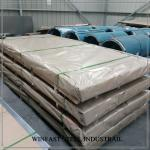 DIN 1.4512 / 409 Stainless Steel Plate / Cold Rolled SS Sheet