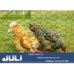el pvc cubrió la malla de alambre del pollo, tela metálica hexagonal cubierta pvc