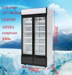 Personalize o congelador comercial da exposição para o restaurante/supermercado