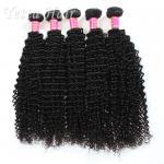もつれの長続きがする等級 6A のブラジルの毛のねじれた巻き毛の織り方は放します